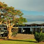 Mfuwe International Airport