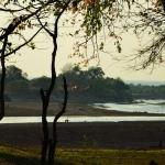 River view dry season